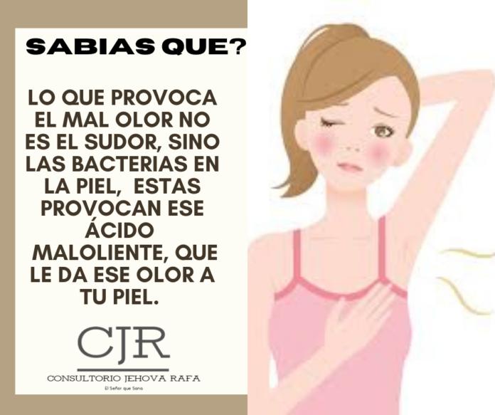 El olor del sobaco viene de la acción biológica de las bacterias en la piel sobre el agua y sal del sudor.